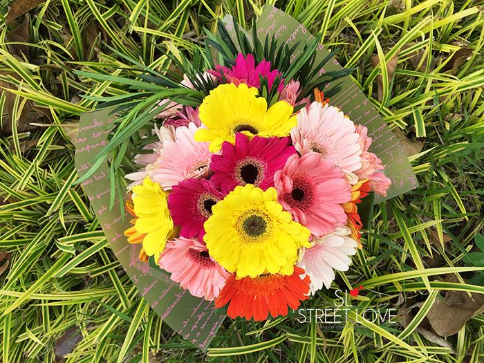FlowerChimp 5
