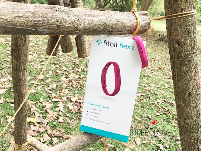 Fitbit Flex 2 1